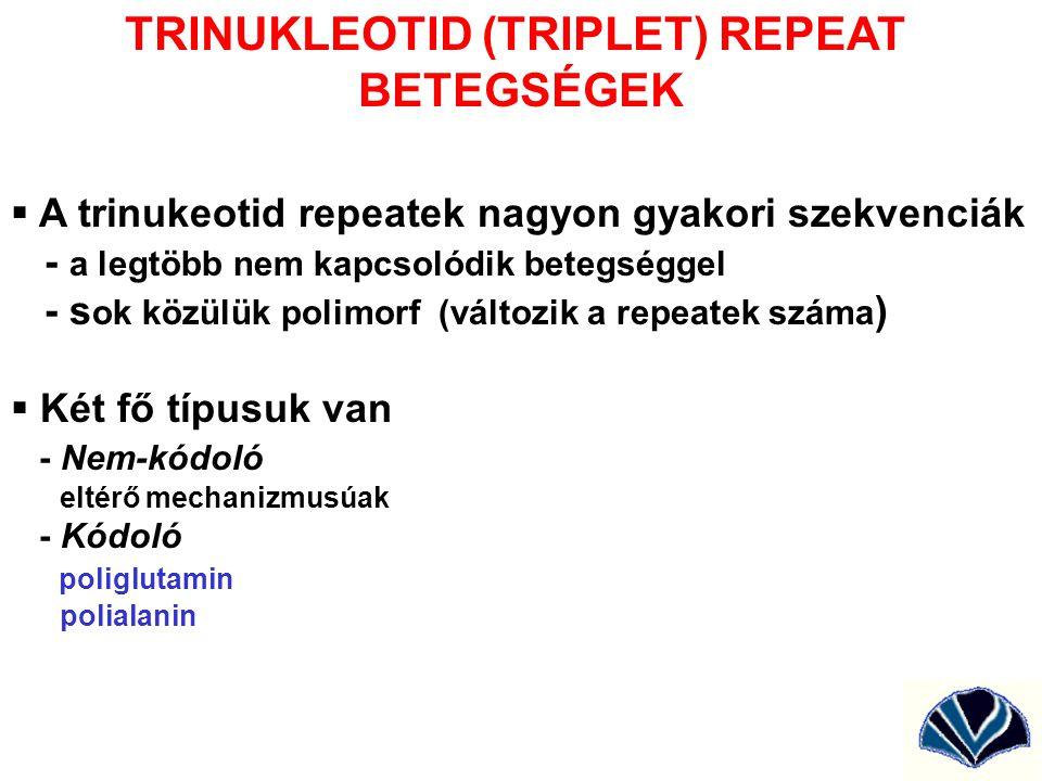 TRINUKLEOTID (TRIPLET) REPEAT