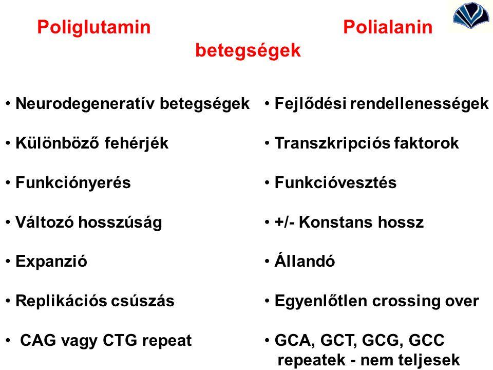 Poliglutamin Polialanin betegségek