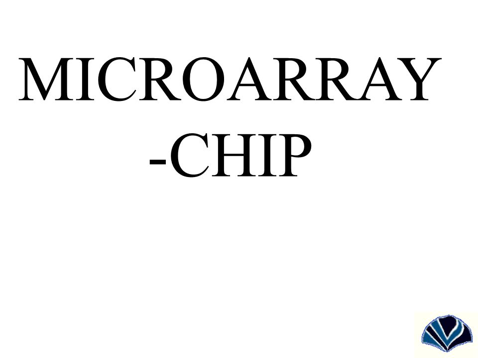 MICROARRAY -CHIP