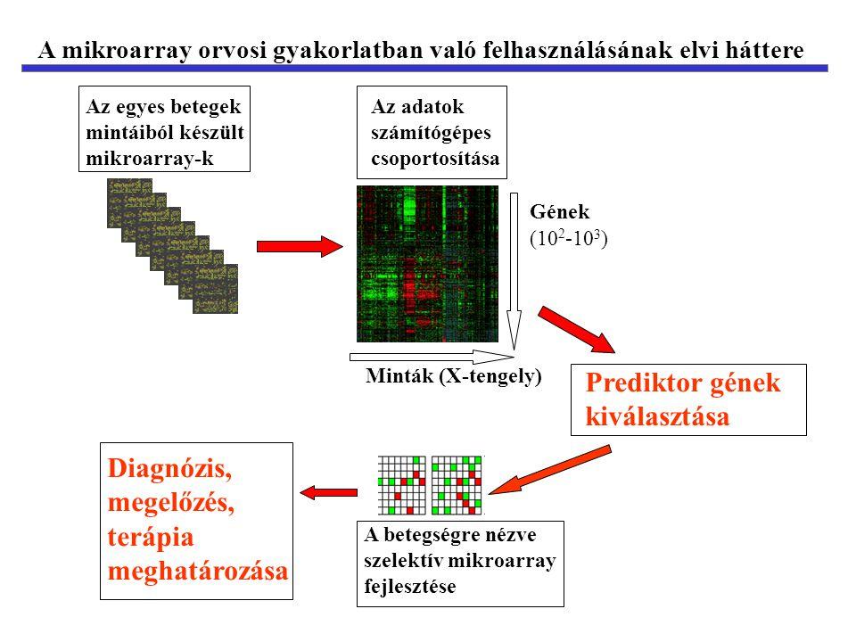 Prediktor gének kiválasztása
