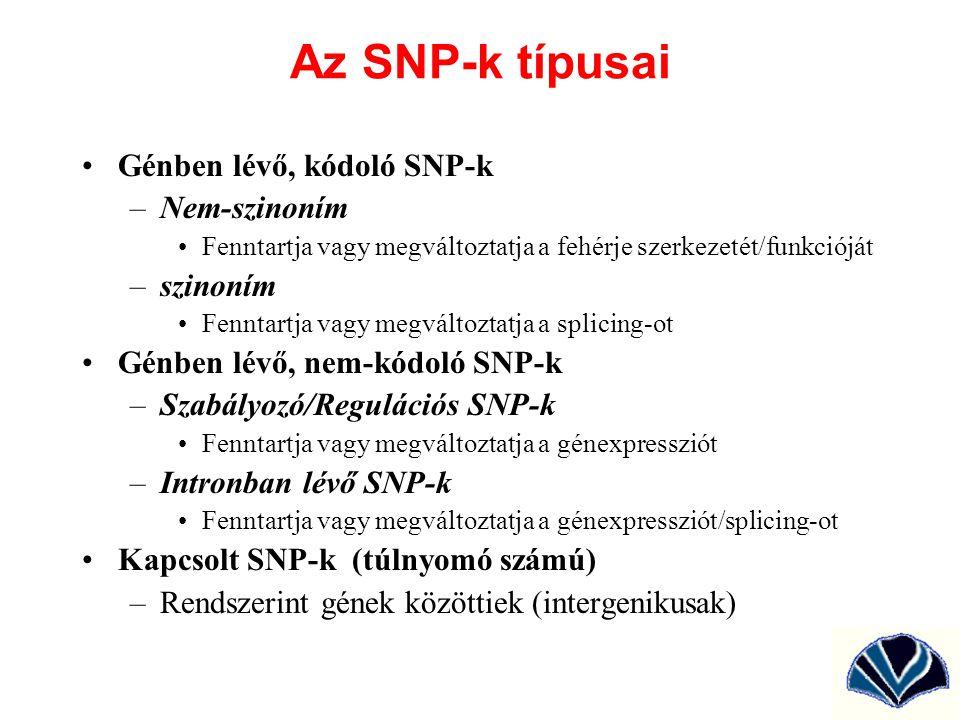 Az SNP-k típusai Génben lévő, kódoló SNP-k Nem-szinoním szinoním
