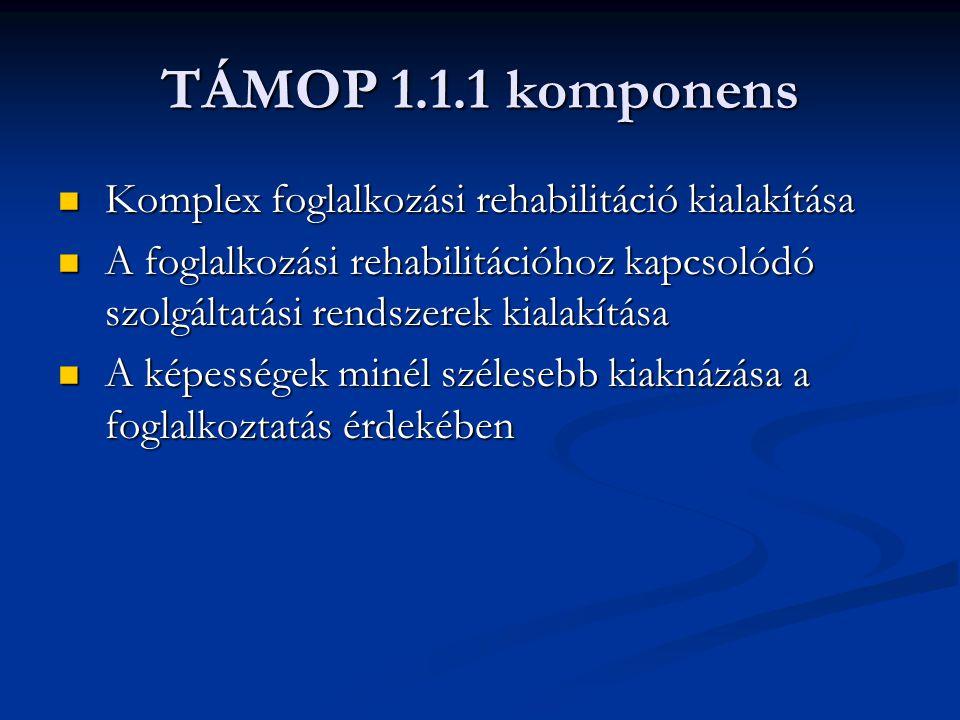 TÁMOP 1.1.1 komponens Komplex foglalkozási rehabilitáció kialakítása