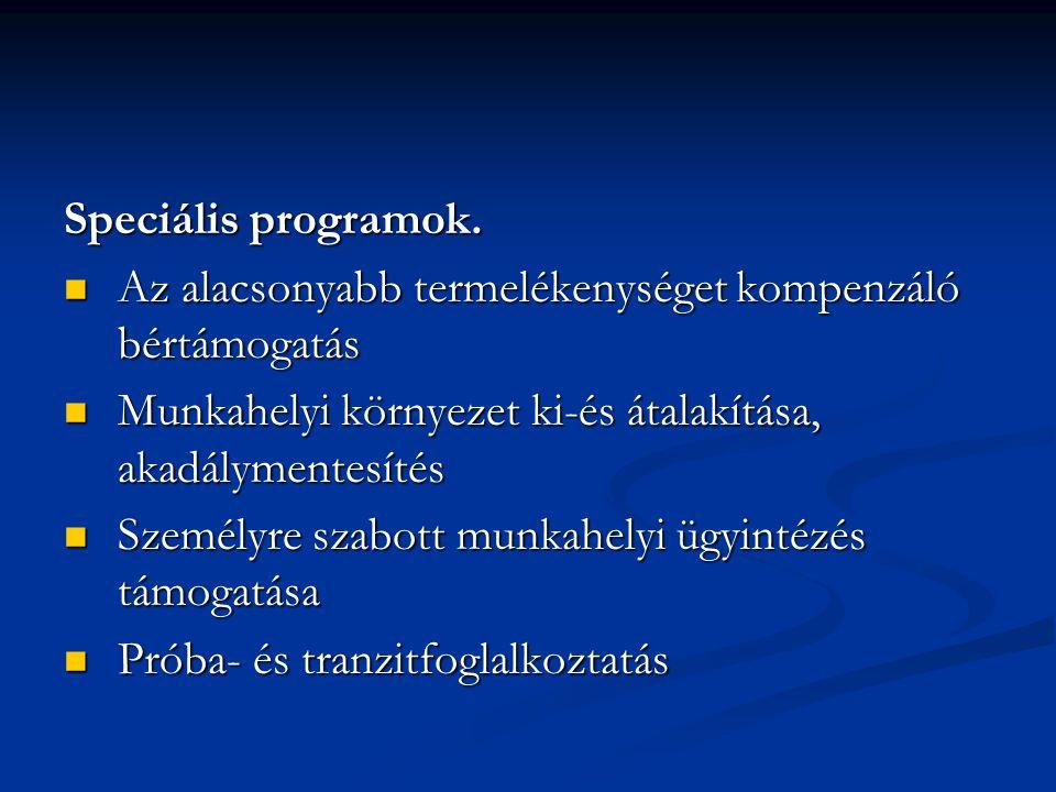 Speciális programok. Az alacsonyabb termelékenységet kompenzáló bértámogatás. Munkahelyi környezet ki-és átalakítása, akadálymentesítés.