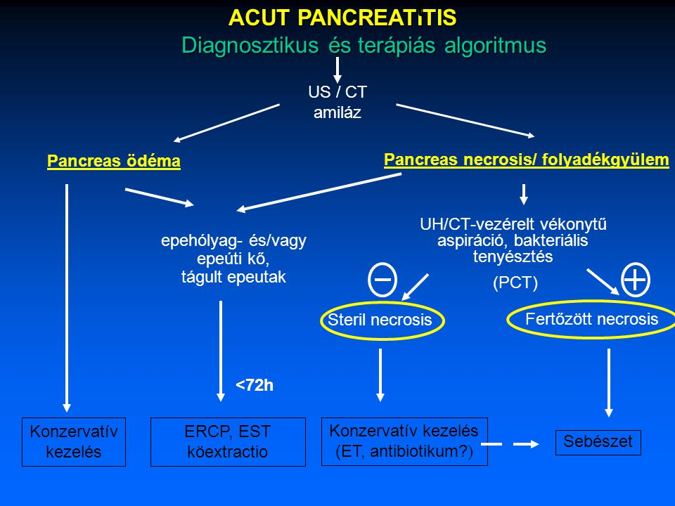 Diagnosztikus és terápiás algoritmus