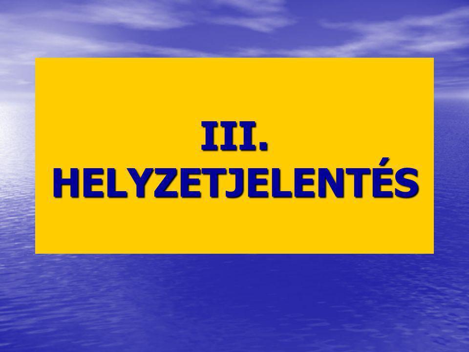 III. HELYZETJELENTÉS