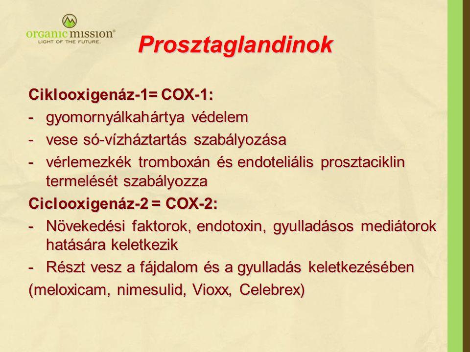 Prosztaglandinok Ciklooxigenáz-1= COX-1: gyomornyálkahártya védelem