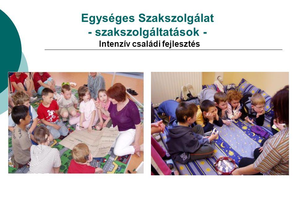 Egységes Szakszolgálat - szakszolgáltatások - Intenzív családi fejlesztés