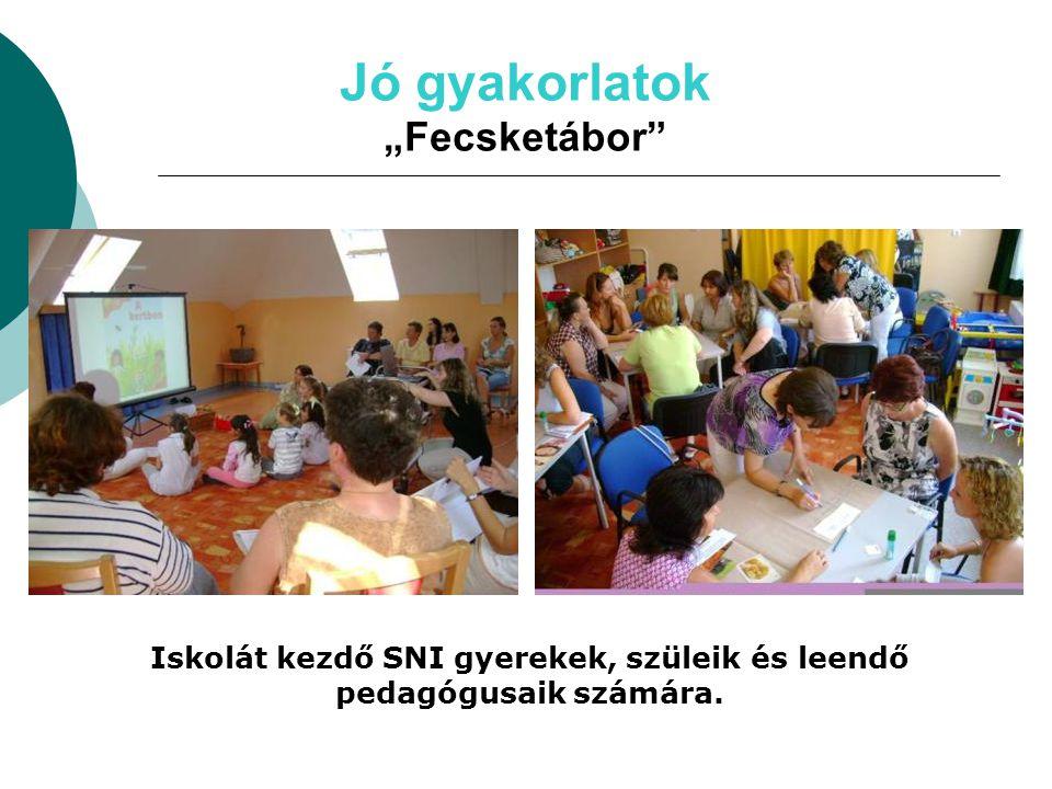 Iskolát kezdő SNI gyerekek, szüleik és leendő pedagógusaik számára.