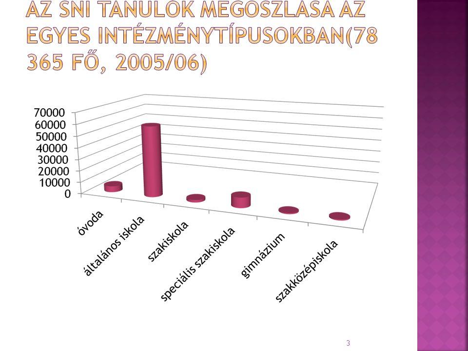 Az SNI tanulók megoszlása az egyes intézménytípusokban(78 365 fő, 2005/06)