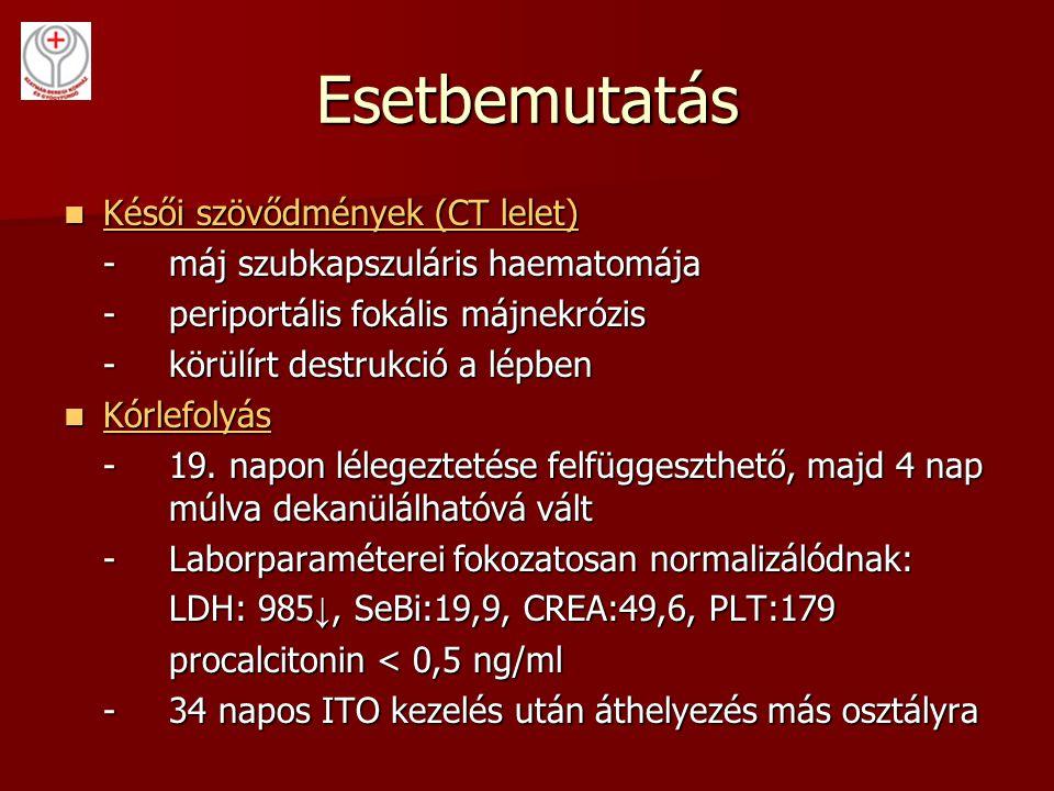Esetbemutatás Késői szövődmények (CT lelet)