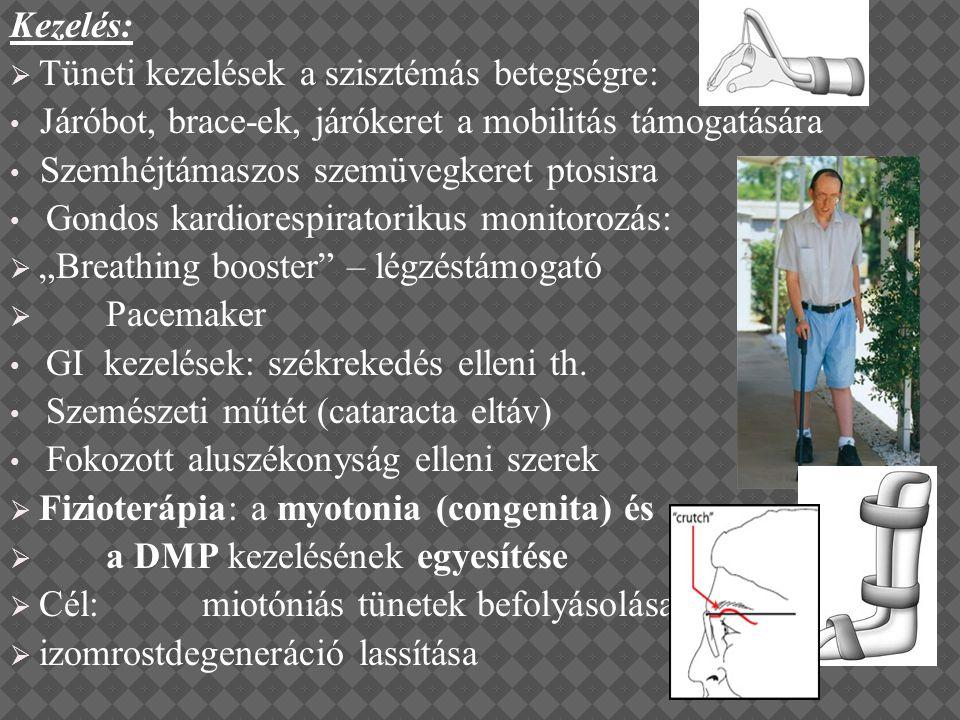 Kezelés: Tüneti kezelések a szisztémás betegségre: Járóbot, brace-ek, járókeret a mobilitás támogatására.
