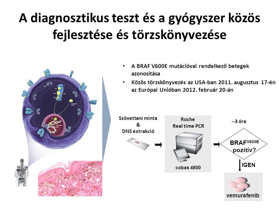 A diagnosztikus teszt és a gyógyszer közös fejlesztése és törzskönyvezése