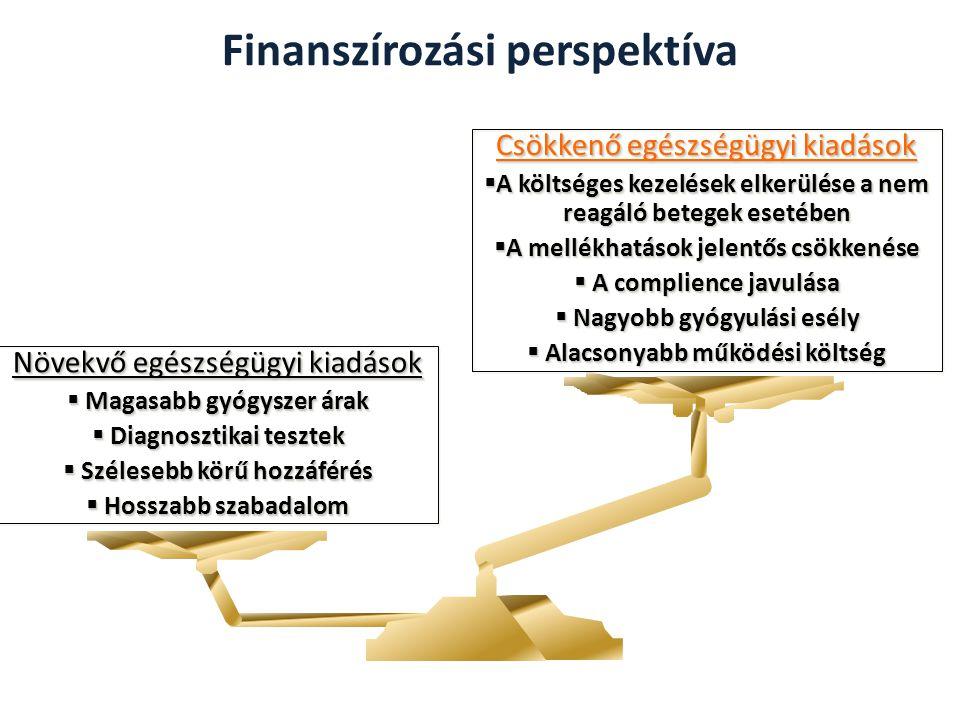 Finanszírozási perspektíva