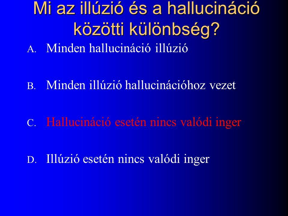 Mi az illúzió és a hallucináció közötti különbség