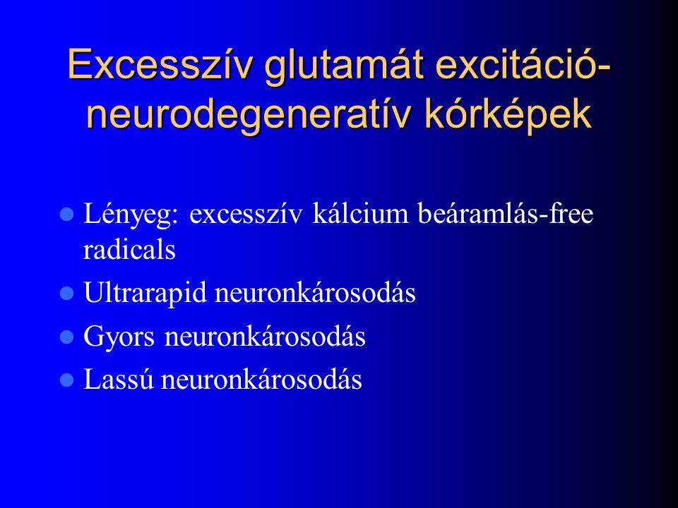 Excesszív glutamát excitáció- neurodegeneratív kórképek