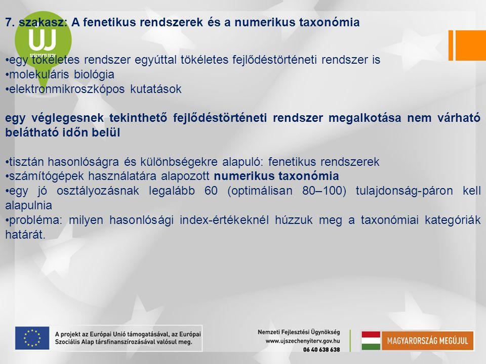 7. szakasz: A fenetikus rendszerek és a numerikus taxonómia