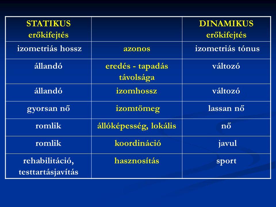 DINAMIKUS erőkifejtés izometriás hossz azonos izometriás tónus állandó