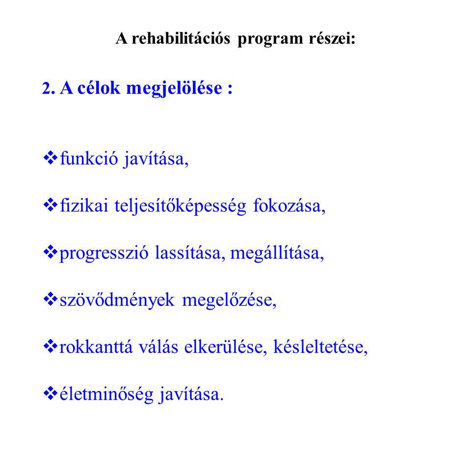 A rehabilitációs program részei: