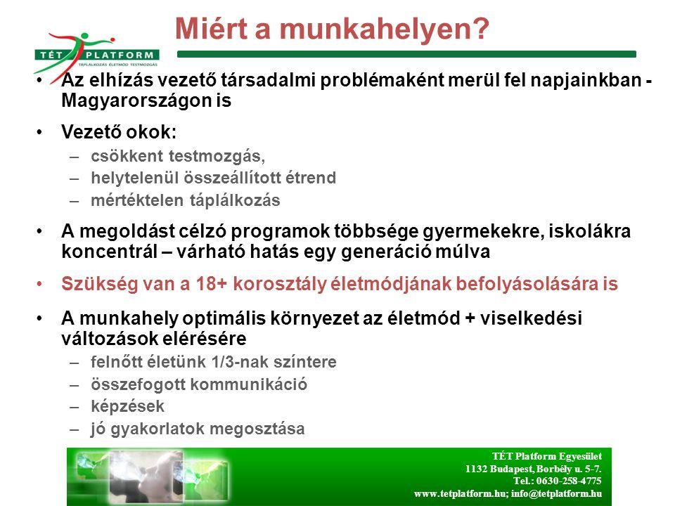 Miért a munkahelyen Az elhízás vezető társadalmi problémaként merül fel napjainkban - Magyarországon is.