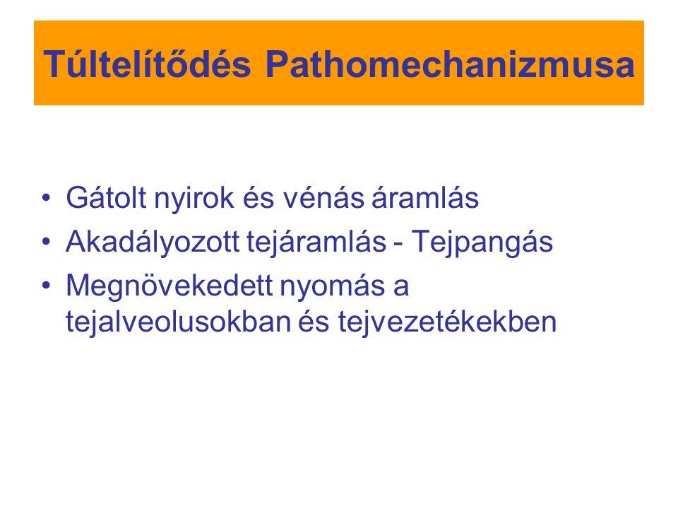 Túltelítődés Pathomechanizmusa
