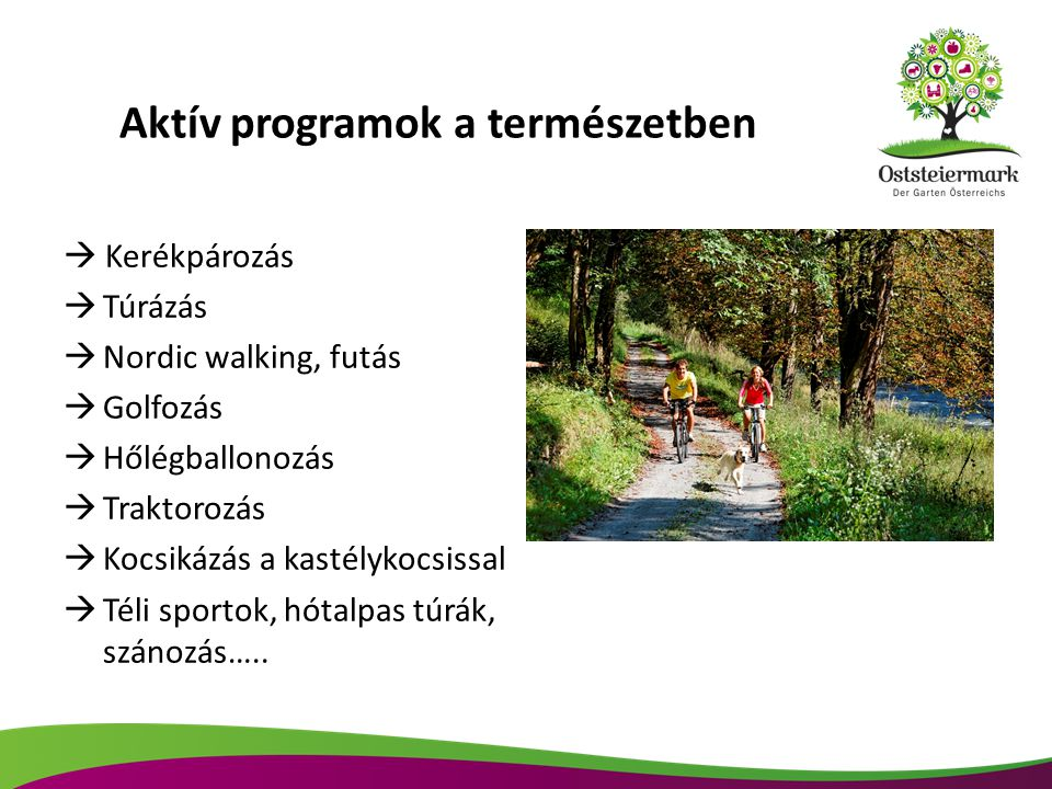 Aktív programok a természetben