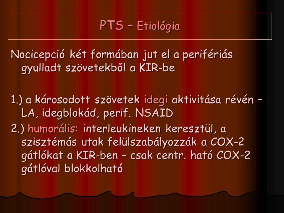 PTS – Etiológia Nocicepció két formában jut el a perifériás gyulladt szövetekből a KIR-be.