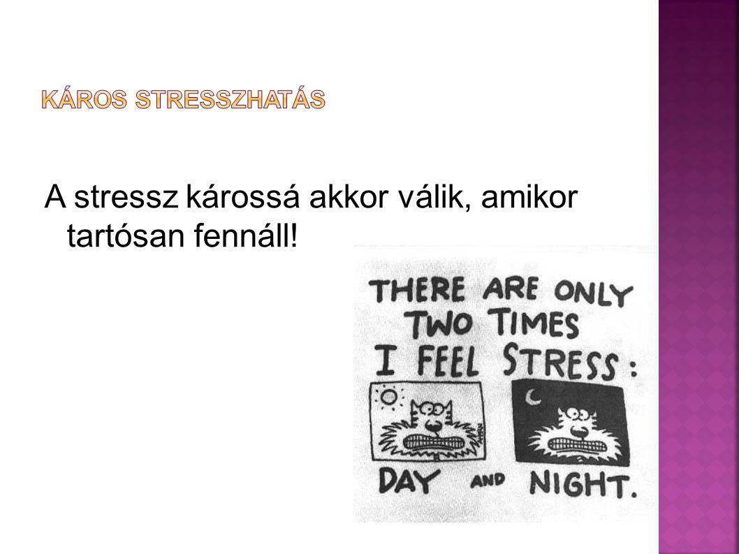 A stressz károssá akkor válik, amikor tartósan fennáll!