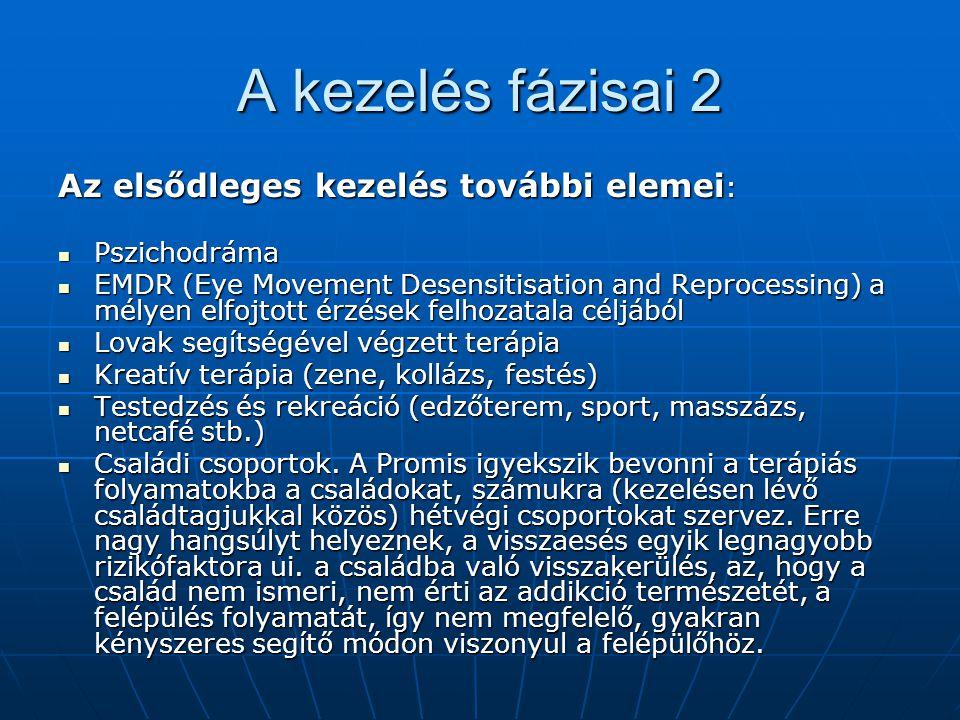 A kezelés fázisai 2 Az elsődleges kezelés további elemei: Pszichodráma