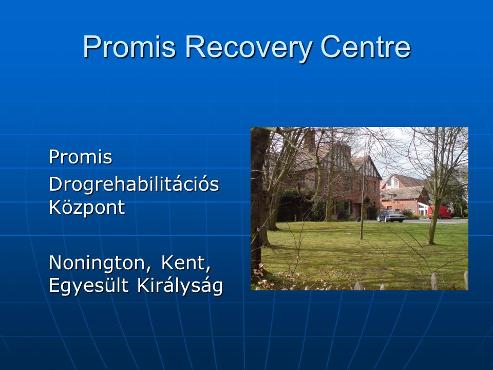 Promis Recovery Centre