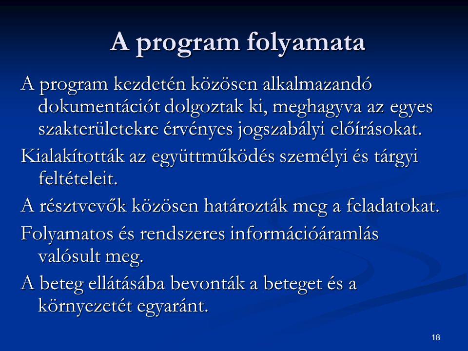 A program folyamata