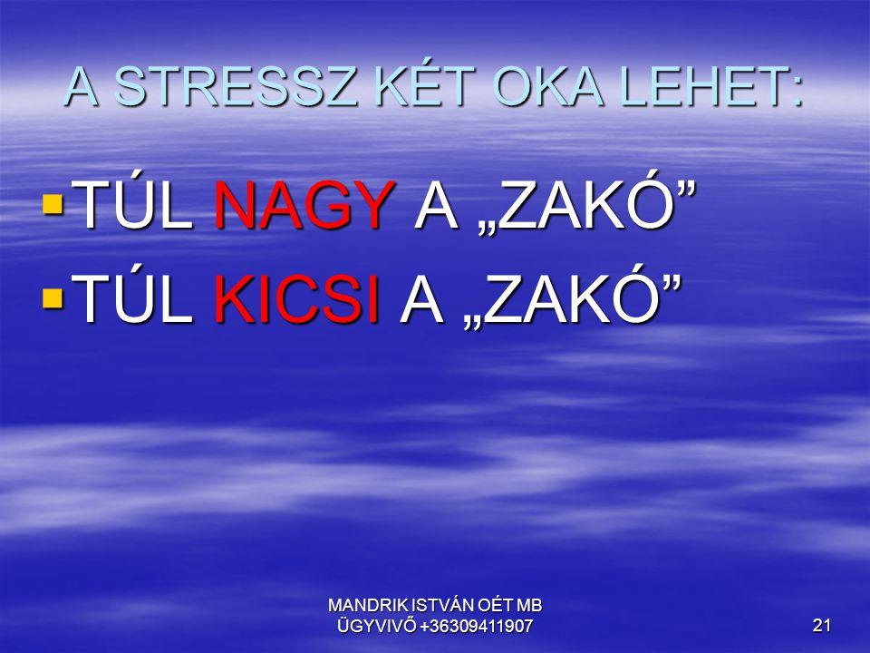 A STRESSZ KÉT OKA LEHET:
