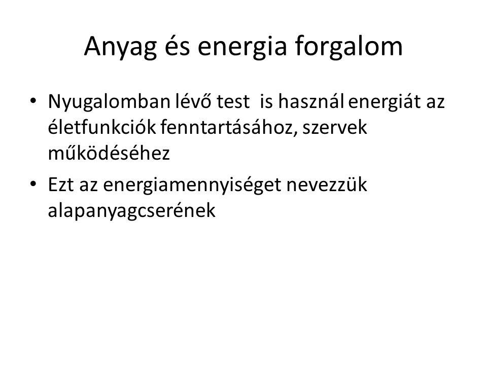 Anyag és energia forgalom
