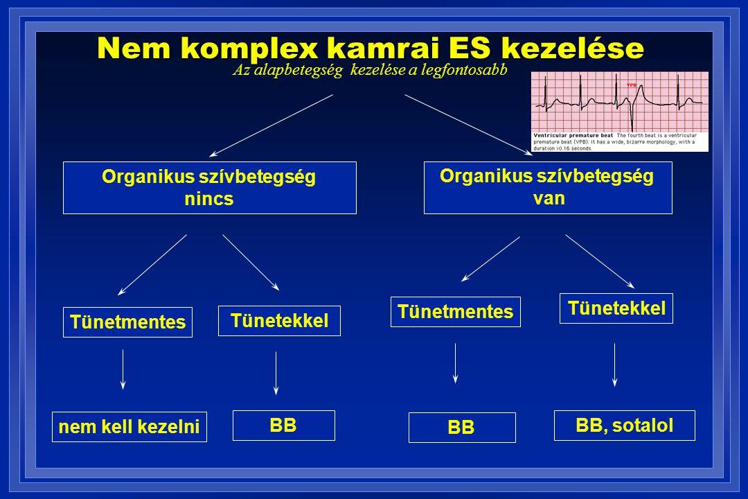Organikus szívbetegség Organikus szívbetegség