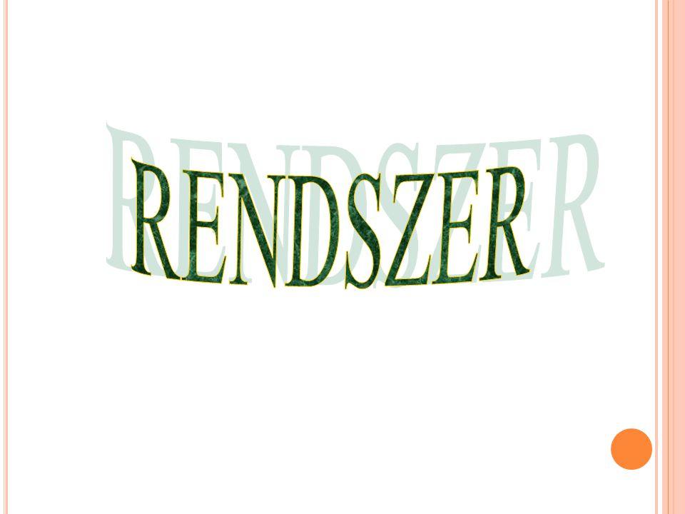 RENDSZER