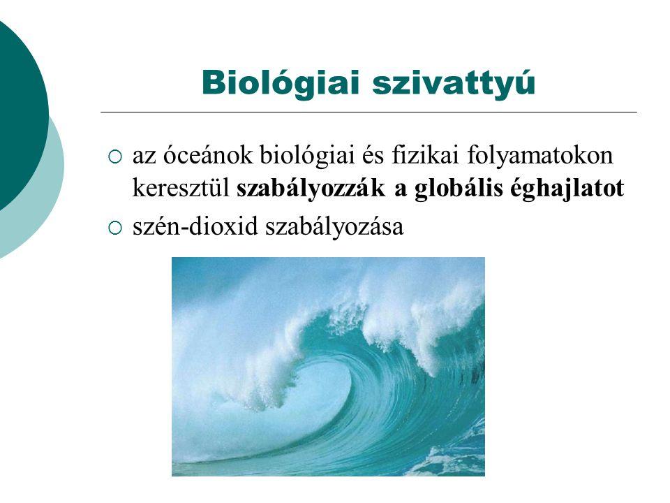 Biológiai szivattyú az óceánok biológiai és fizikai folyamatokon keresztül szabályozzák a globális éghajlatot.