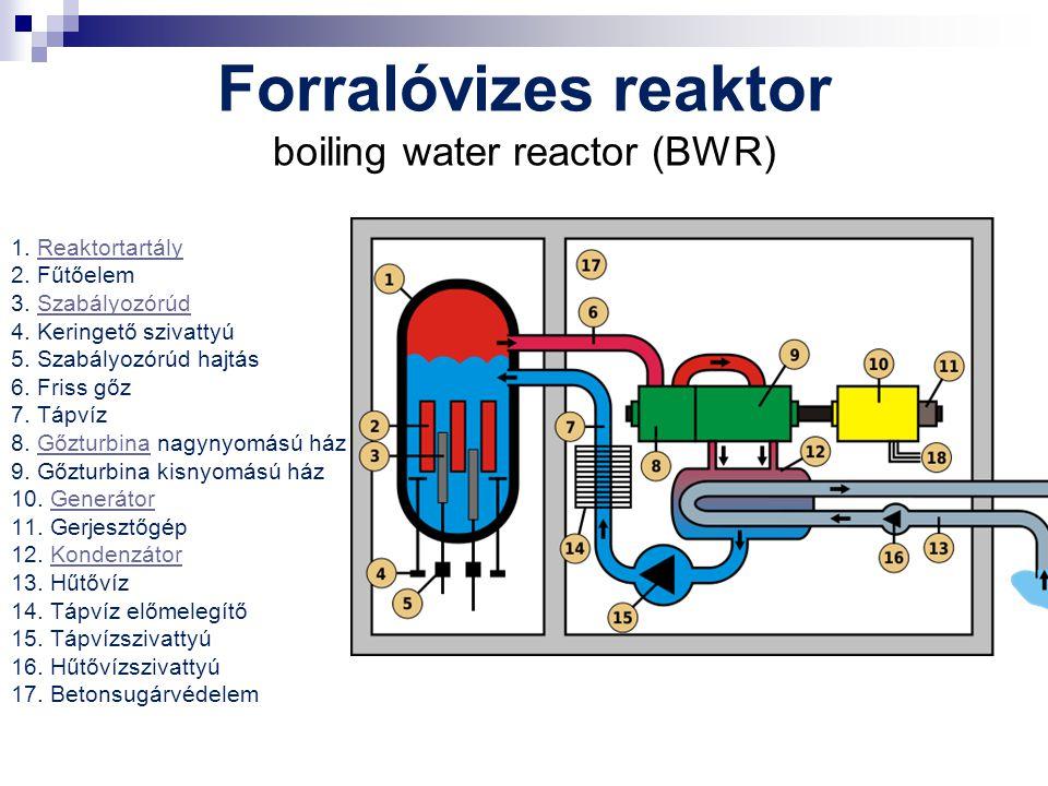 Forralóvizes reaktor boiling water reactor (BWR)