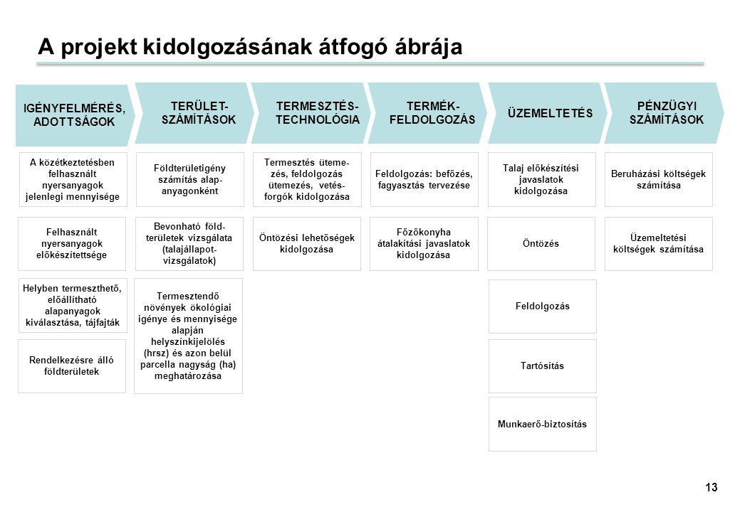 A projekt kidolgozásának átfogó ábrája