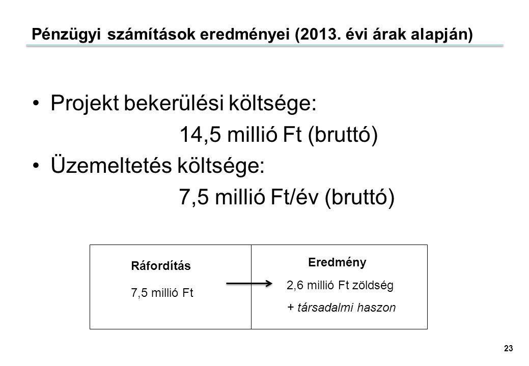 Pénzügyi számítások eredményei (2013. évi árak alapján)