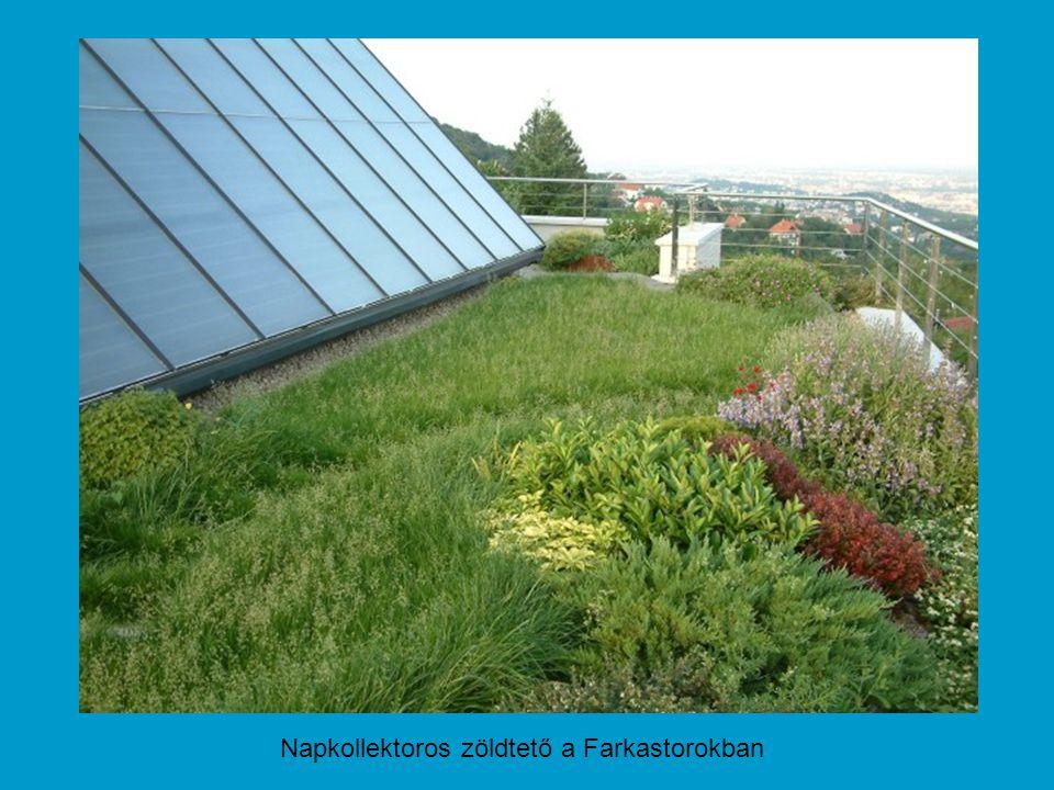 Napkollektoros zöldtető a Farkastorokban