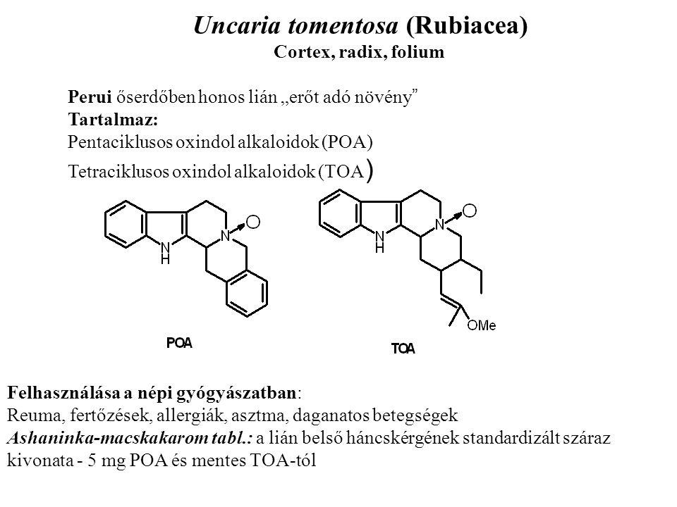 Uncaria tomentosa (Rubiacea)