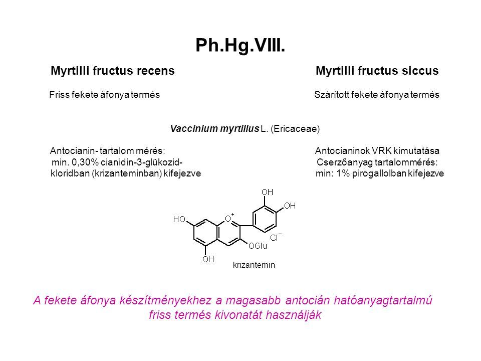 Myrtilli fructus recens Myrtilli fructus siccus