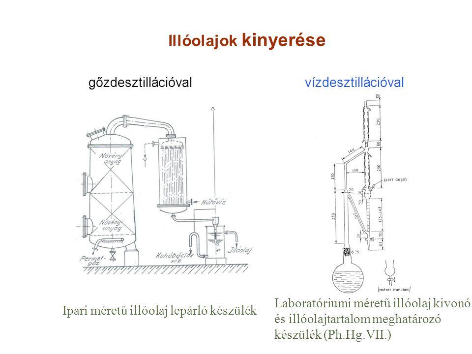Illóolajok kinyerése gőzdesztillációval vízdesztillációval