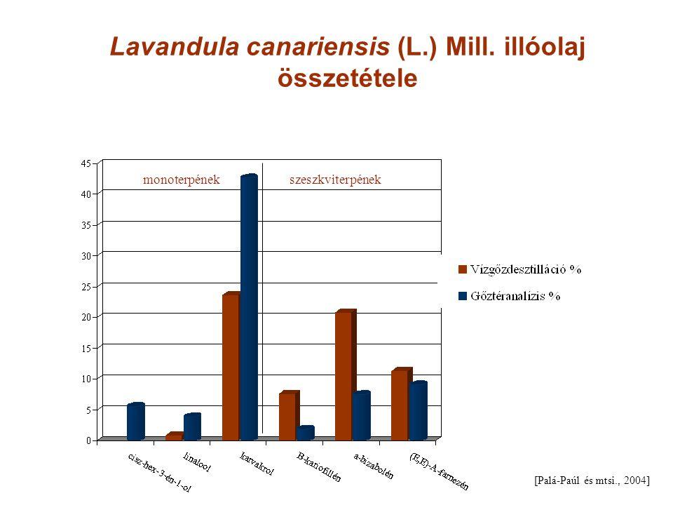 Lavandula canariensis (L.) Mill. illóolaj összetétele