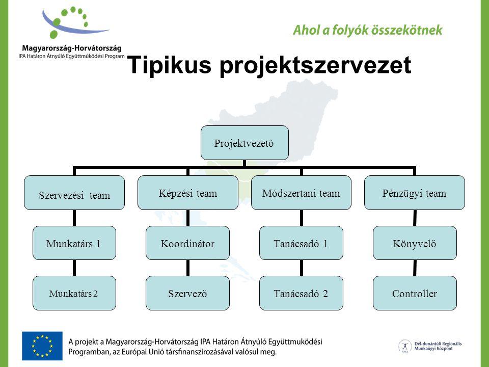 Tipikus projektszervezet
