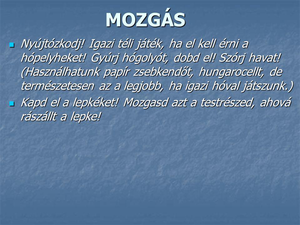 MOZGÁS