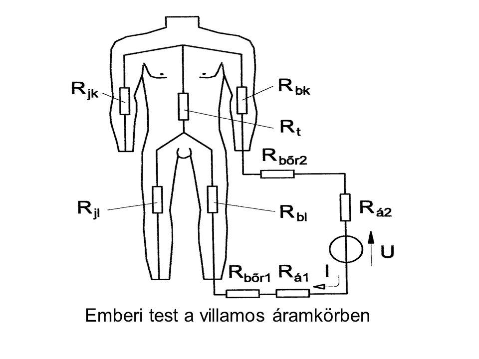 Emberi test a villamos áramkörben