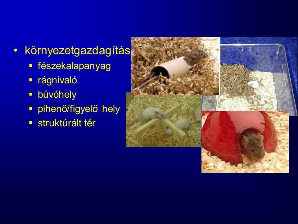 környezetgazdagítás fészekalapanyag rágnivaló búvóhely