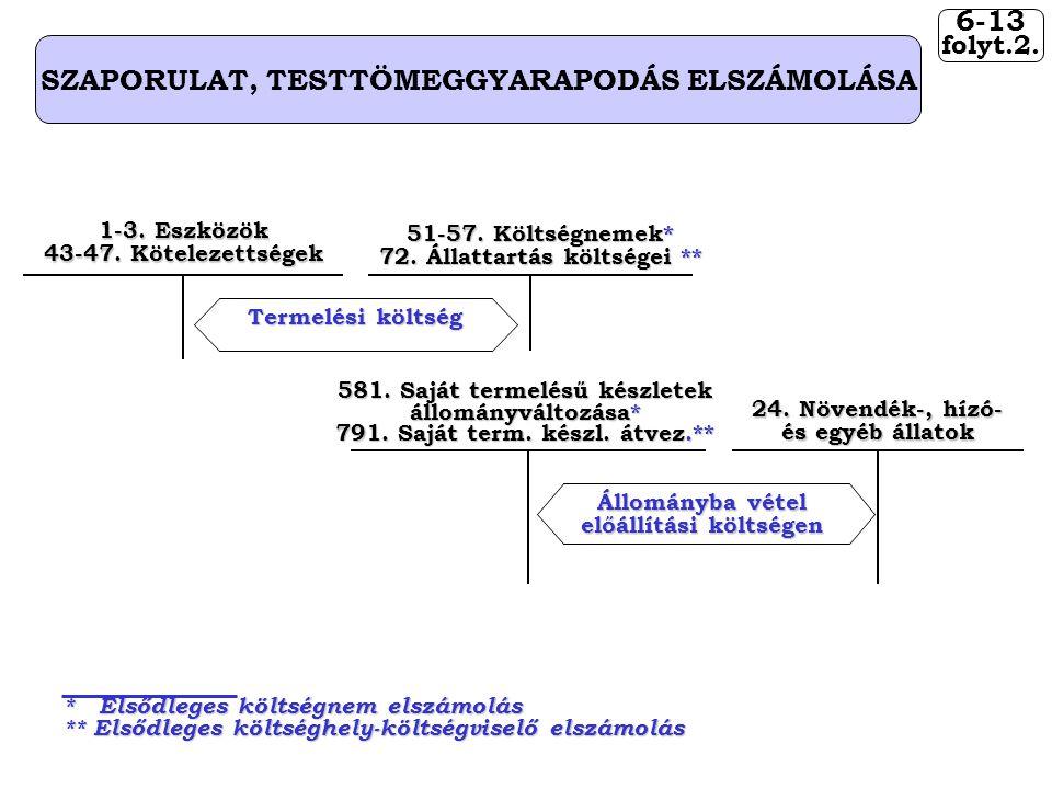 6-13 SZAPORULAT, TESTTÖMEGGYARAPODÁS ELSZÁMOLÁSA