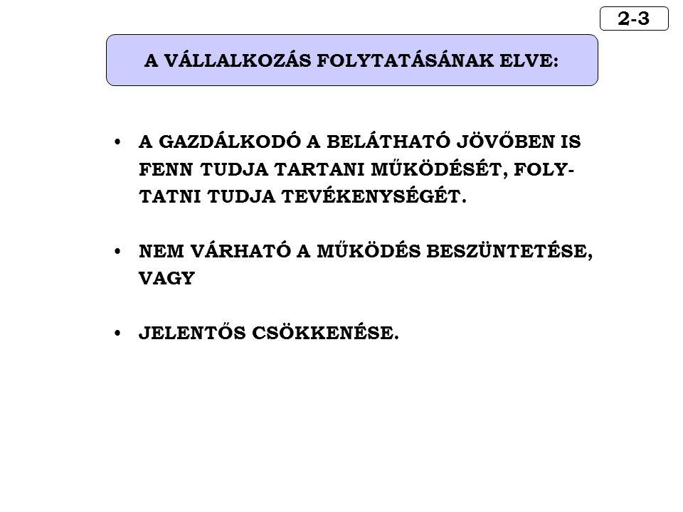 A VÁLLALKOZÁS FOLYTATÁSÁNAK ELVE: