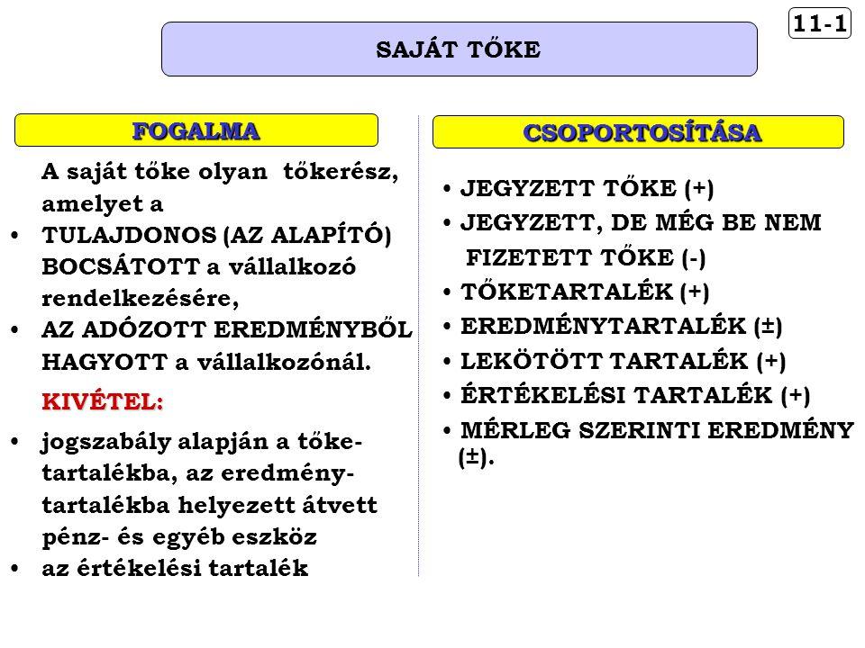 11-1 SAJÁT TŐKE FOGALMA CSOPORTOSÍTÁSA